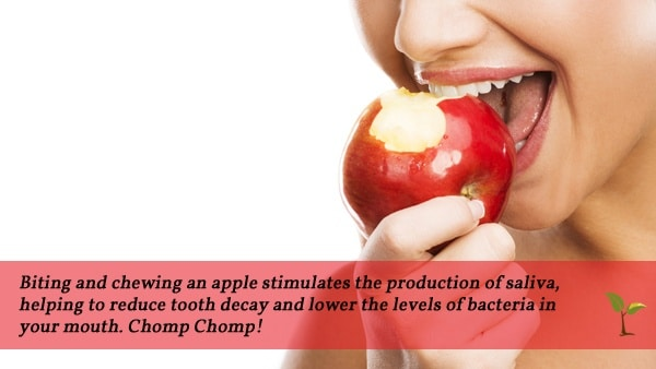 Biting Apple quote