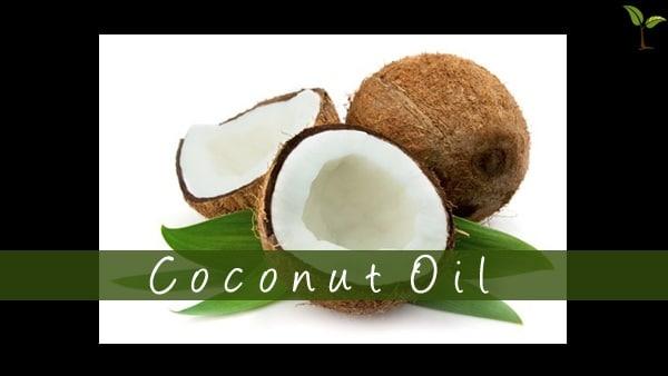 Coconut Oil11