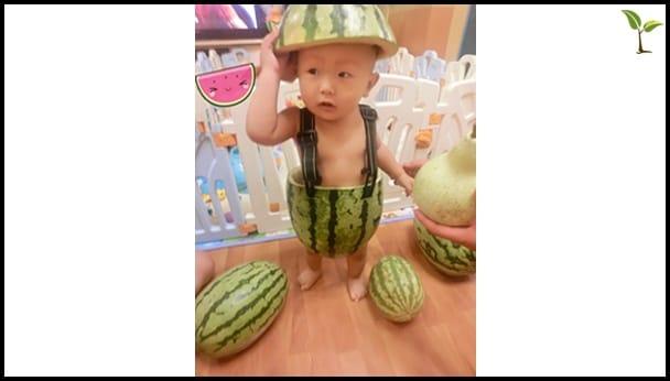 Watermelon baby image border