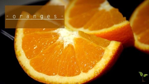 orange-quarters11