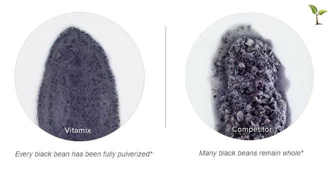 blackbean vitamix